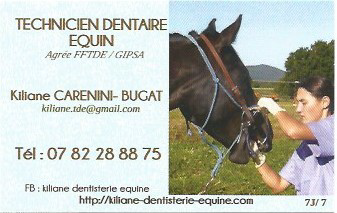 Kiliane Technicien Dentaire Equin